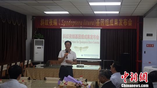 重庆 陈植炜/图为华南师范大学教授冯启理在学术成果发布会的发言。陈植炜摄