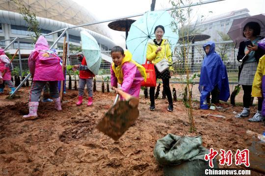 """厦门植树节公益活动:小朋友为大熊猫种""""口粮"""""""