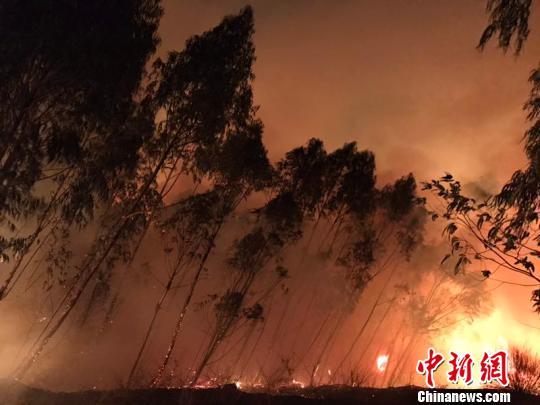 云南大理弥渡森林火场南线、西线明火已全部扑灭