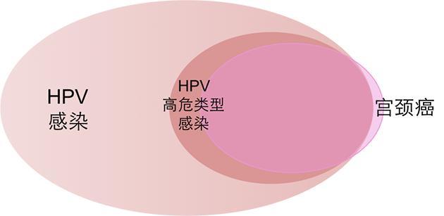 干货在这!HPV疫苗咋打?